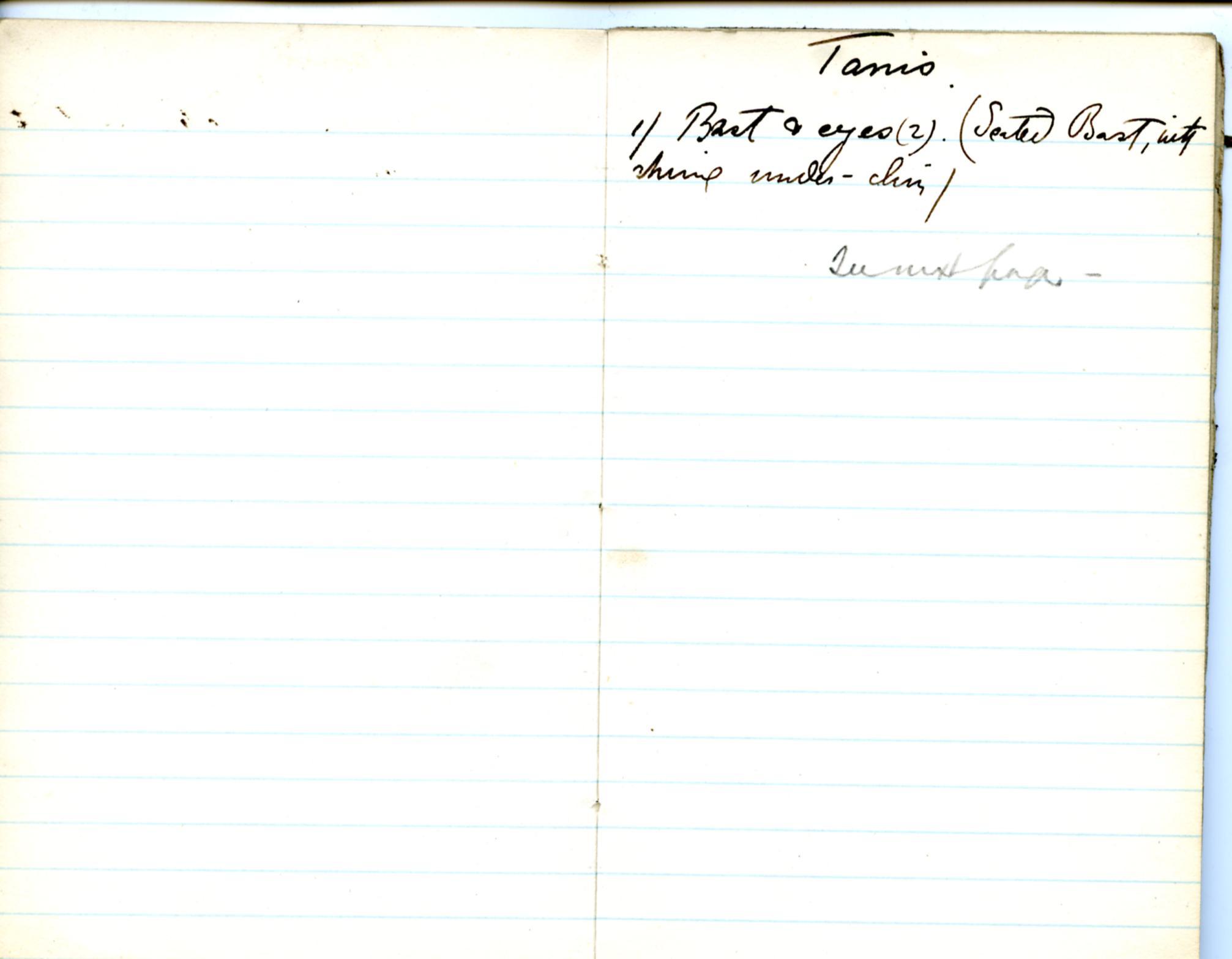 1884-85 Naukratis, Tanis, Bubastis, Tell el-Yahudiya, Nebesheh, Tell Dafana, Tell Sueilin, Tell el-Maskuta DIST.10.01g