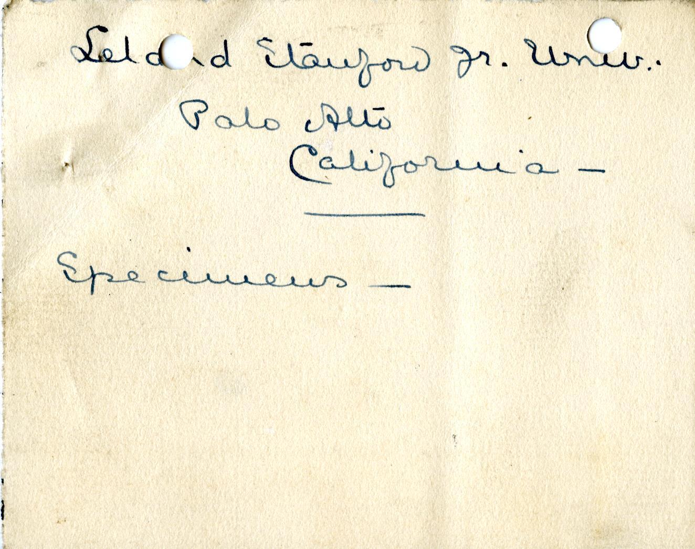 1906-07 Deir el-Bahri, Oxyrhynchus, Ihnasya DIST.28.04b