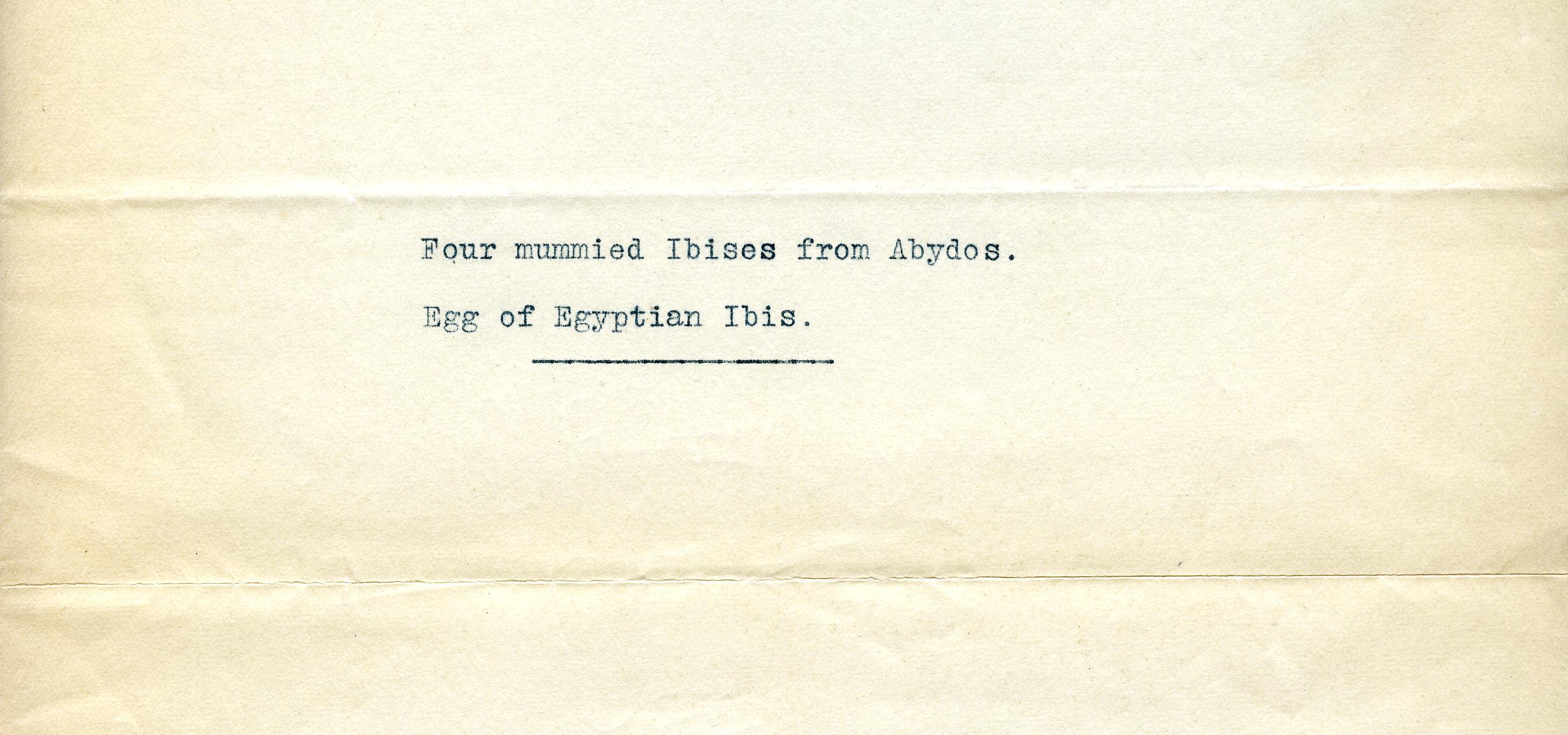 1912-13 Abydos etc DIST.35.02b