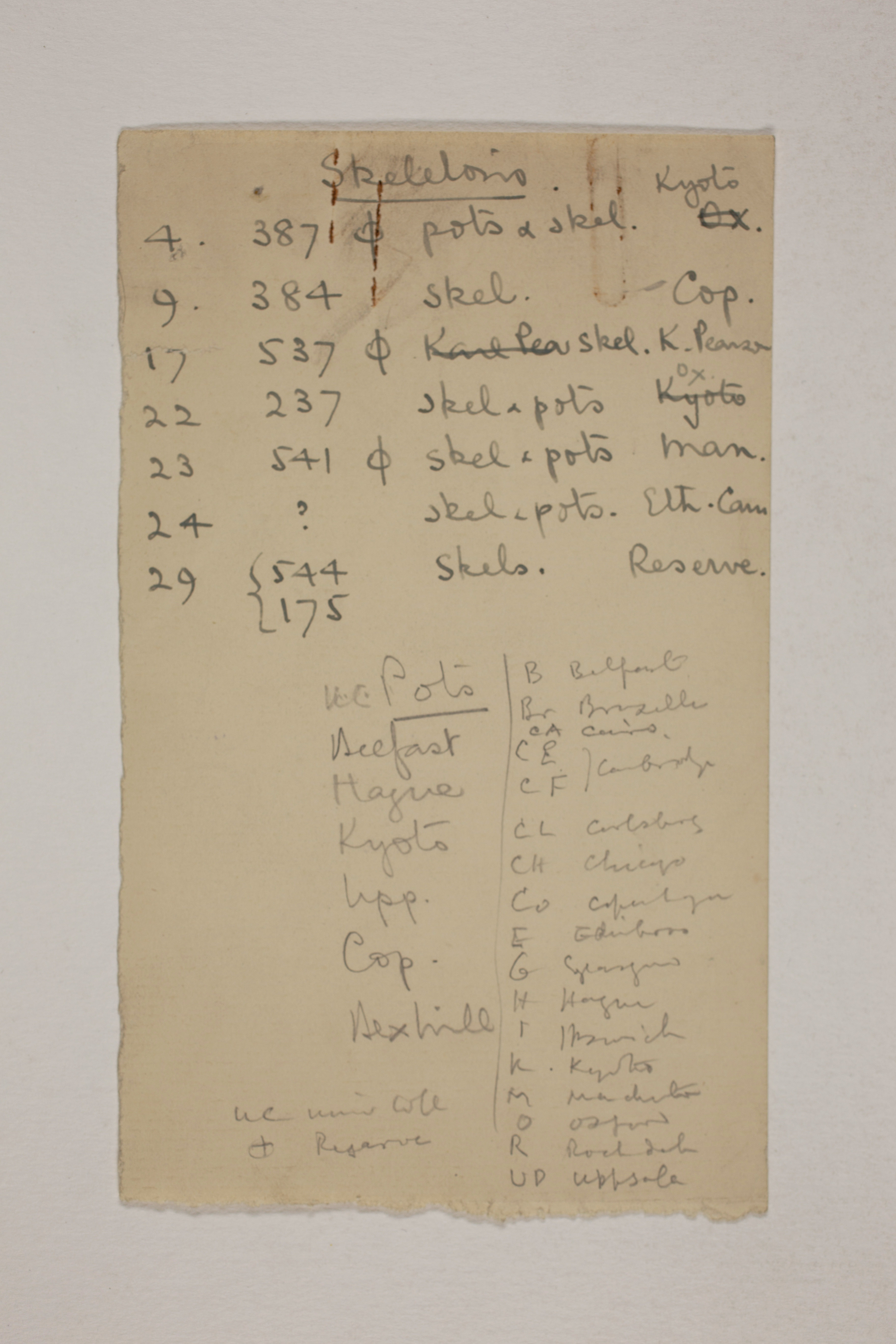 1913-14 Lahun, Haraga Object list PMA/WFP1/D/22/12