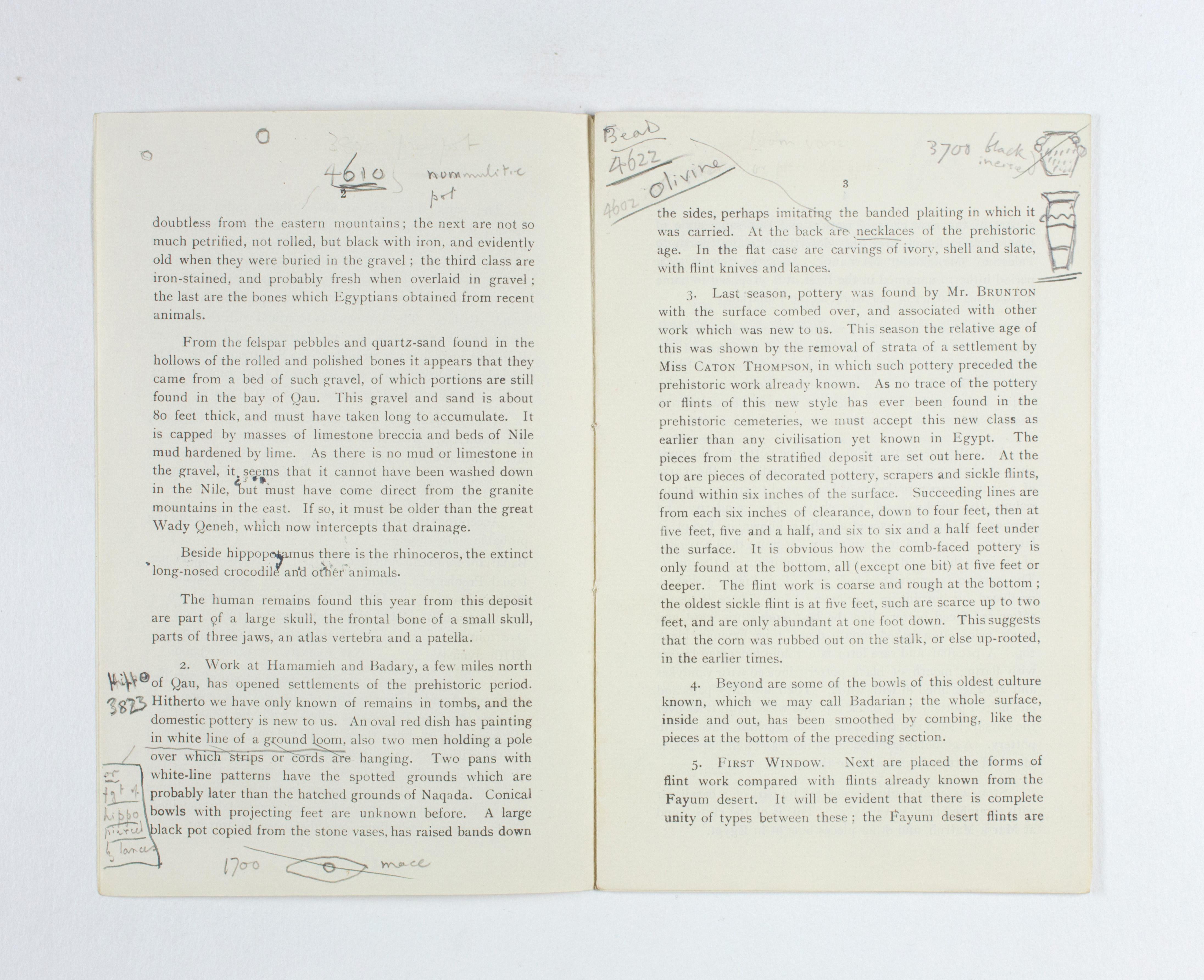 1923-24 Qau el-Kebir, Hemamieh Exhibition catalogue PMA/WFP1/D/27/34.3