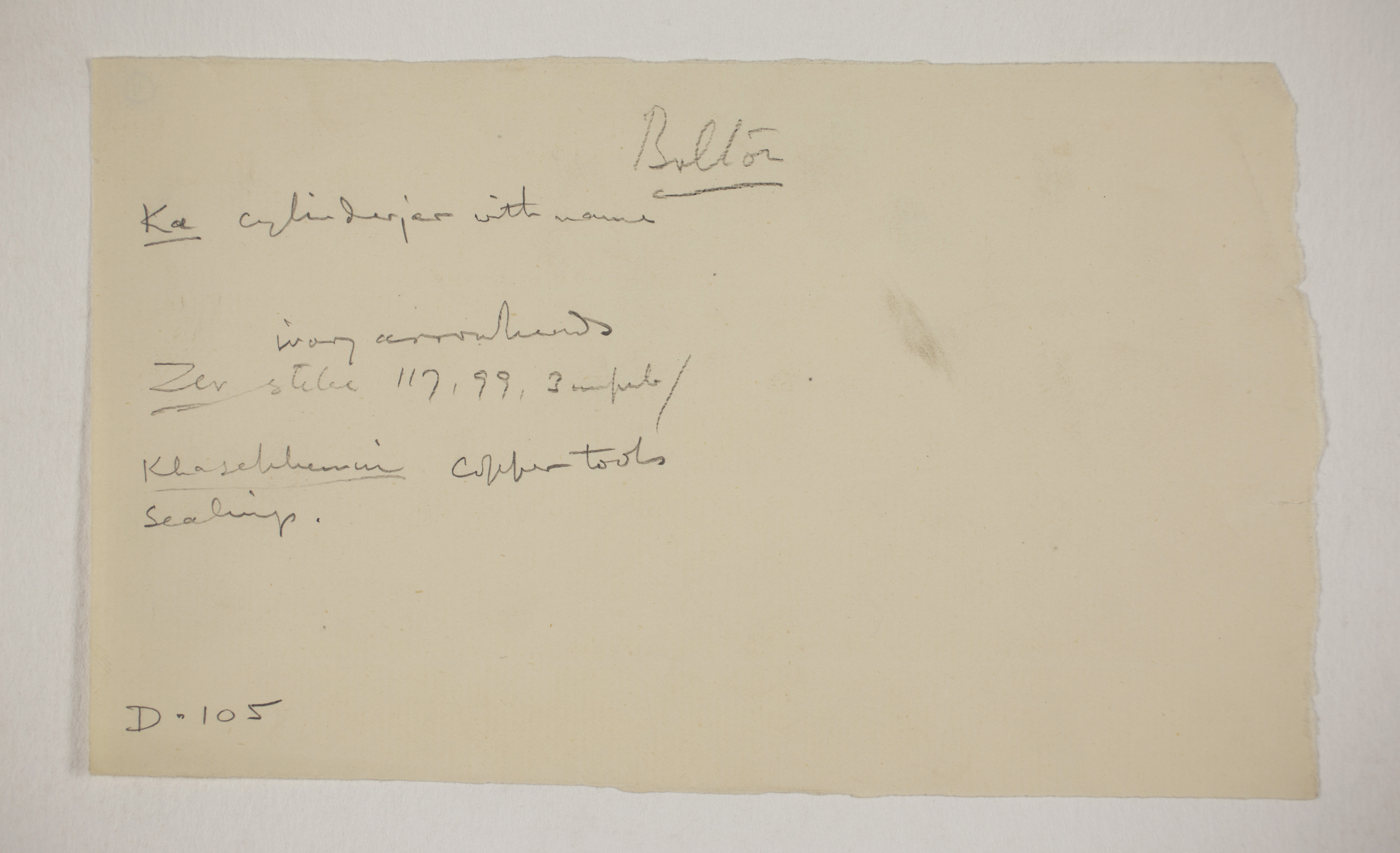 1900-01 Abydos, Bet Khallaf, el-Mahasna Individual institution list  PMA/WFP1/D/9/11