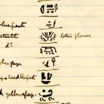 1886 Nebesheh Tell Dafana 1884 el-Qantara, Tell Gemayemi, Tell Sueilin DIST.09.07a