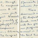 1884-1915 Oxyrhynchus, Faiyum, el-Hibeh, Atfieh, el-Sheikh Ibada DIST.15.21b