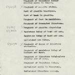 1932-34 el-Amarna DIST.56.02c