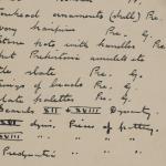 1910-11 Hawara, Gerzeh, Memphis, Mazghuneh Individual institution list  PMA/WFP1/D/19/21.1