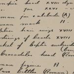 1910-11 Hawara, Gerzeh, Memphis, Mazghuneh Individual institution list  PMA/WFP1/D/19/27