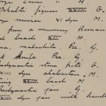 1910-11 Hawara, Gerzeh, Memphis, Mazghuneh Individual institution list  PMA/WFP1/D/19/29