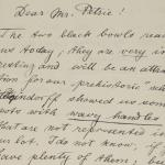 Naqada 1894-1895, Correspondence, PMA/WFP1/D/3/3.1