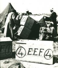 Photograph of crates of excavated finds from EEF digs.